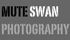 mute swan photography